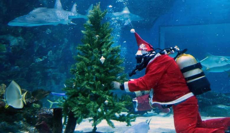 karácsonyi program budapesten